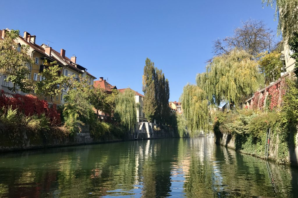 Ljubljanica River with green riverbanks and weeping willow trees