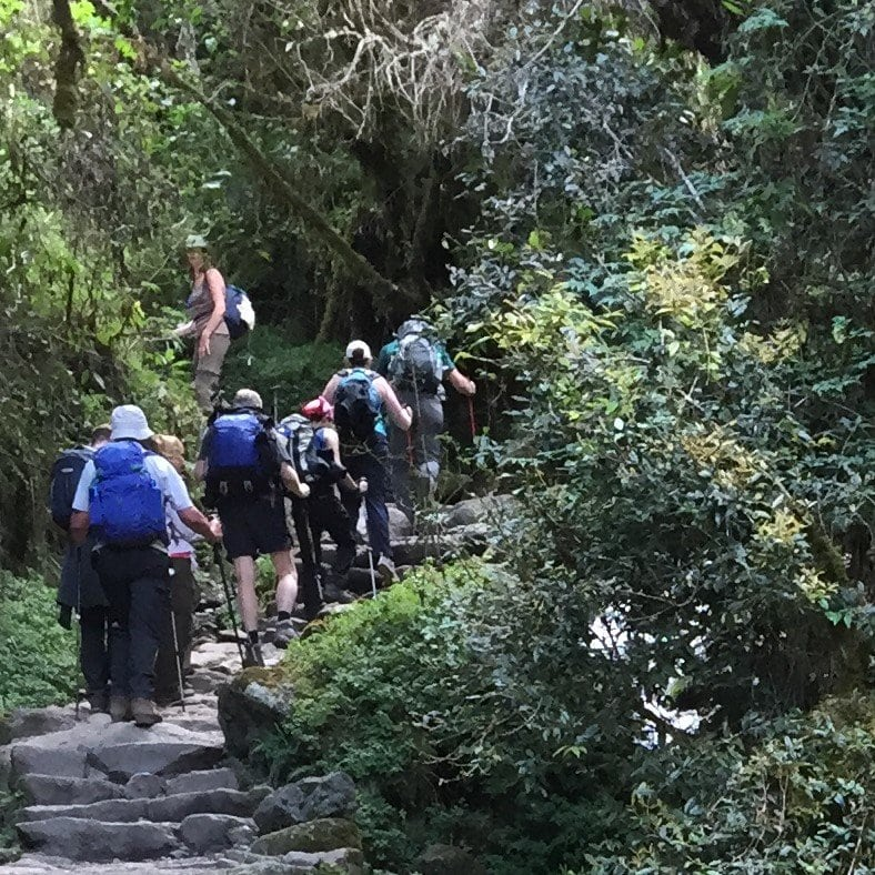Hikers with day packs going up the steps of the inca trail