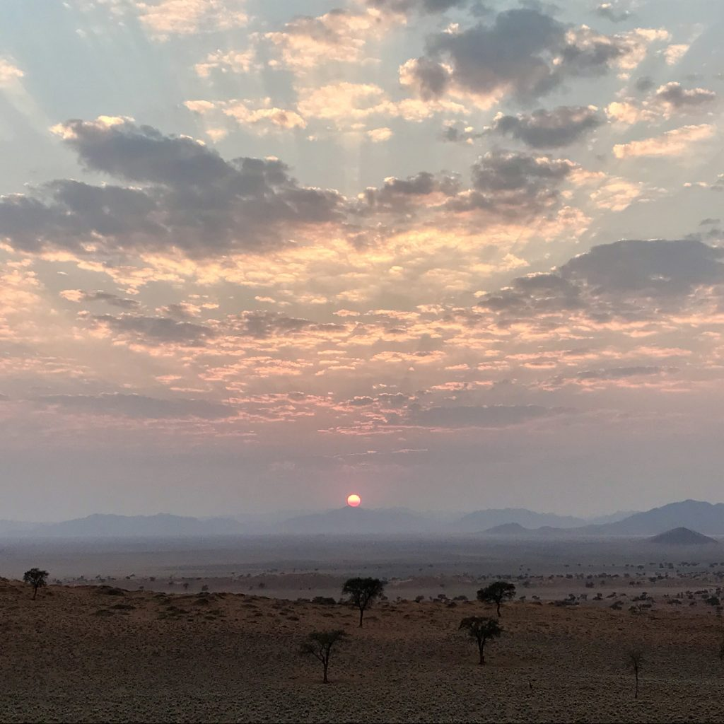 Sunrise over the dunes acacia trees and plains of the Namibrand Nature Reserve in Namibia