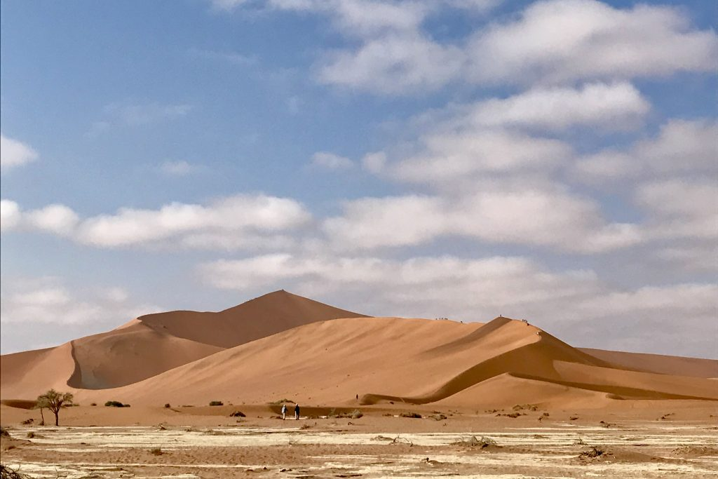 Big daddy sand dune in the sossusvlei area of the namib desert in namibia