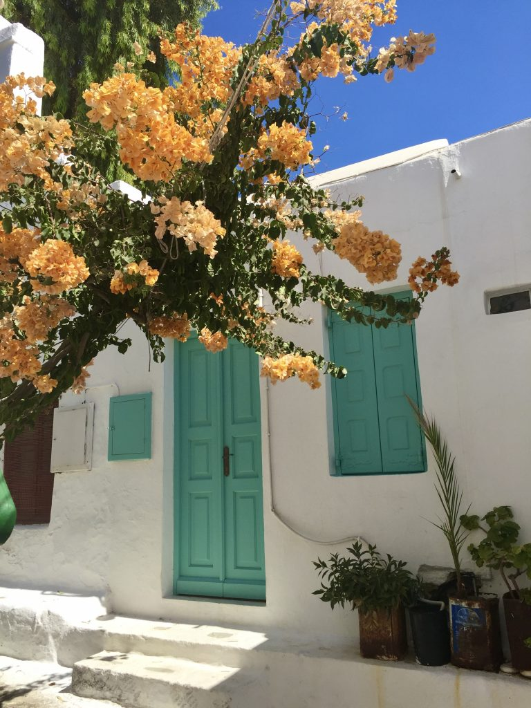 white-washed Greek house with orange blossoms and green doors and shutters