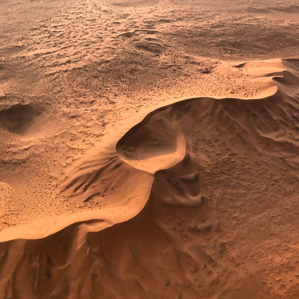 Crisp dune formations in the red sand sea of the namib desert