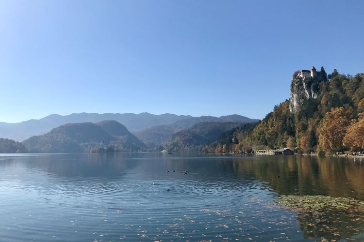 Things to do in Lake Bled - showing the castle on the right and the island in the distance on the left