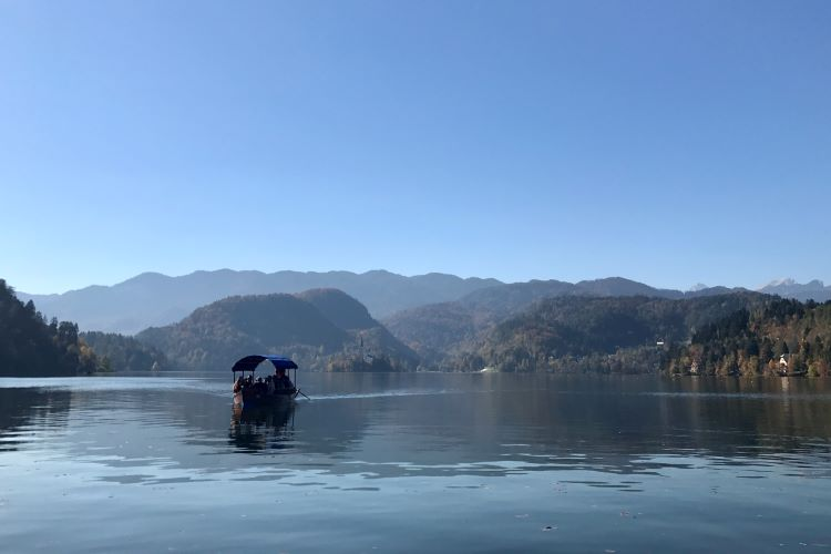 a gondola on the smooth calm waters of lake bled