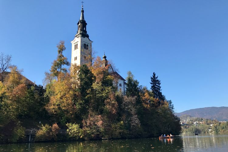 Bled Island up close, showing the church steeple and surrounding trees
